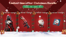 Introducing the Christmas Bundle with exclusive holiday swags!